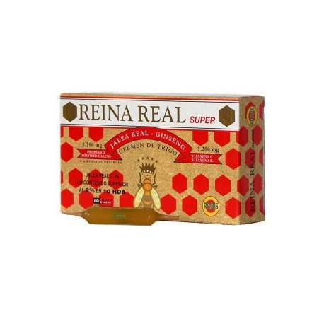 REINA REAL SUPER - JALEA REAL - 20 VIALES - ROBIS