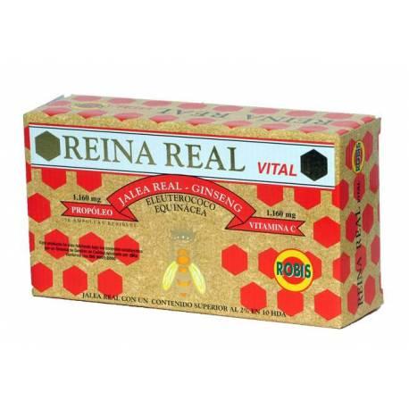 REINA REAL VITAL - JALEA REAL - 20 VIALES - ROBIS