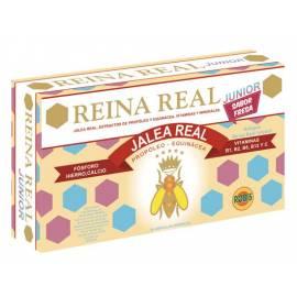 JALEA REAL REINA REAL JUNIOR (INFANTIL) 20AMPOLLAS ROBIS