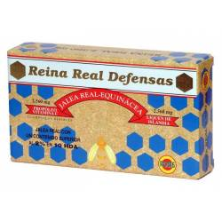 JALEA REAL REINA REAL DEFENSAS 20AMPOLLAS  ROBIS